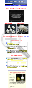 milk-and-water-kefir-video-courses.png